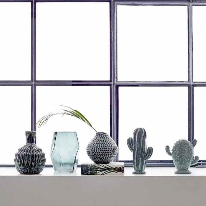 Dekorativní kaktus